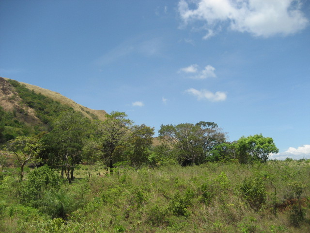 12 5 acre secluded mountain view farm in chalapa chiriqui for Secluded mountain homes for sale